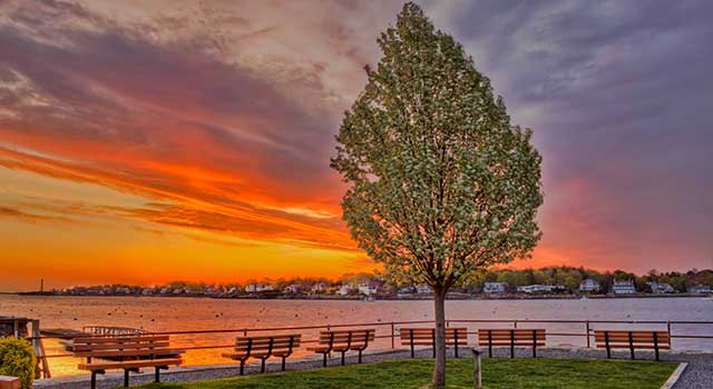 Marblehead's Hammond Park by Mike Porter